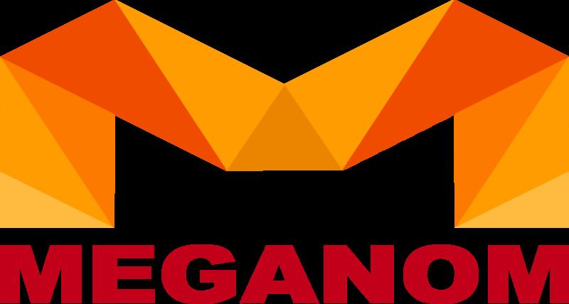 Меганом